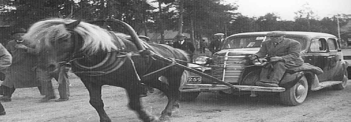 When Cars Replaced Horses: A Case for Sabbath Skid Marks